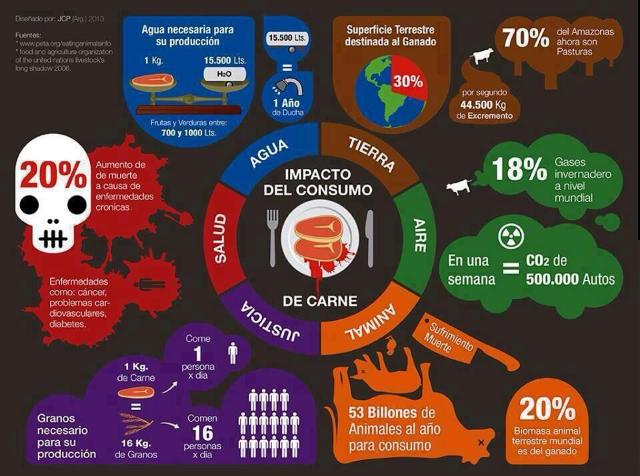 Impacto del consumo de carne